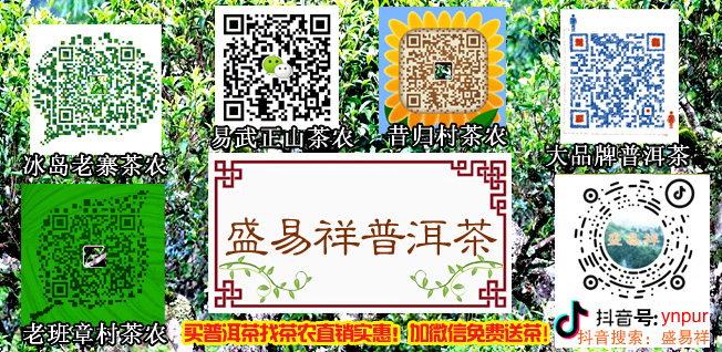 yunzixuan.jpg